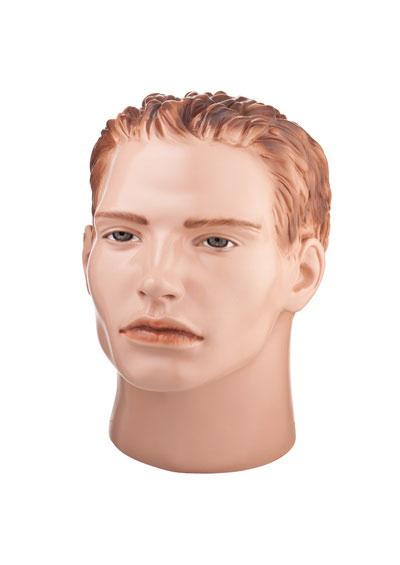 Big male mannequin head