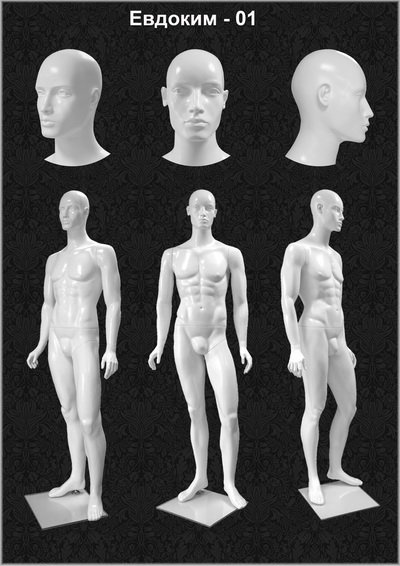 Male mannequin of the Evdokim series