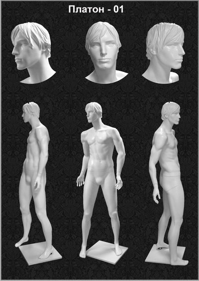 Male mannequin of the Plato series