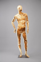 Mannequins Shiny Gold 4 Series