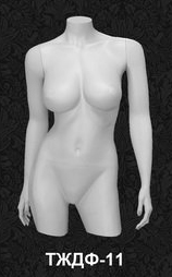 Female Torso Series 11