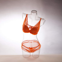 "Female Torso Transparent ""On the Move"" 02 - DTFB-001"