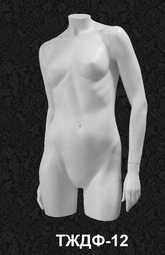 Female Torso Series 12