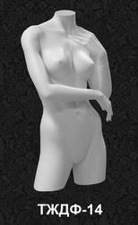 Series of female torsos 14
