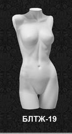 Series of underwear torsos BLT 19