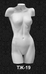 Series of torsos with shoulders 19