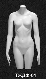 Female Torso Series 01