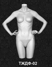 Female Torso Series 02