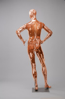 Mannequins Shiny Copper 5 Series