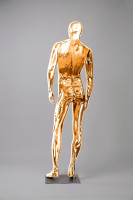 Mannequins Shiny Gold 1 Series