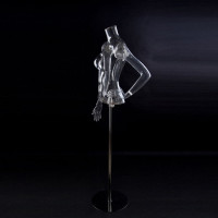 Female torso with hands transparent on a stand