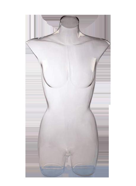 Female Torso Transparent