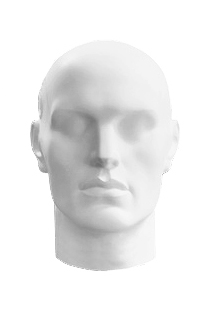 Head of the Svoy series MGS-01