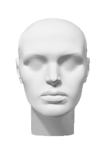 Head of the Own series ZhGS-01