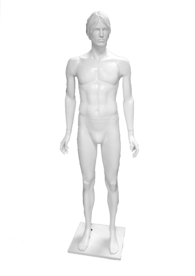 Male mannequin of the Andrew series