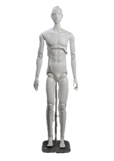 Male mannequin of the Evolution series