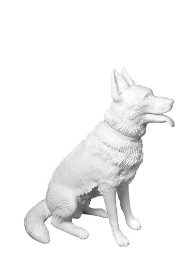 Sheepdog Sedentary
